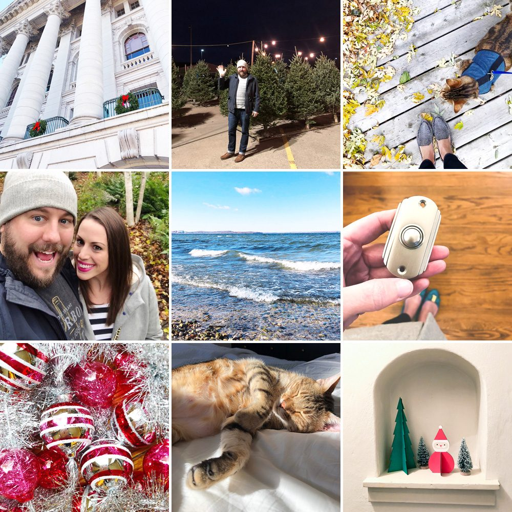 Monthly Snapshots: November 2017 | Curated Couple